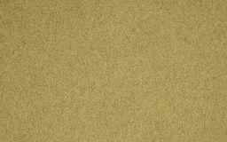 太阳米粒组织