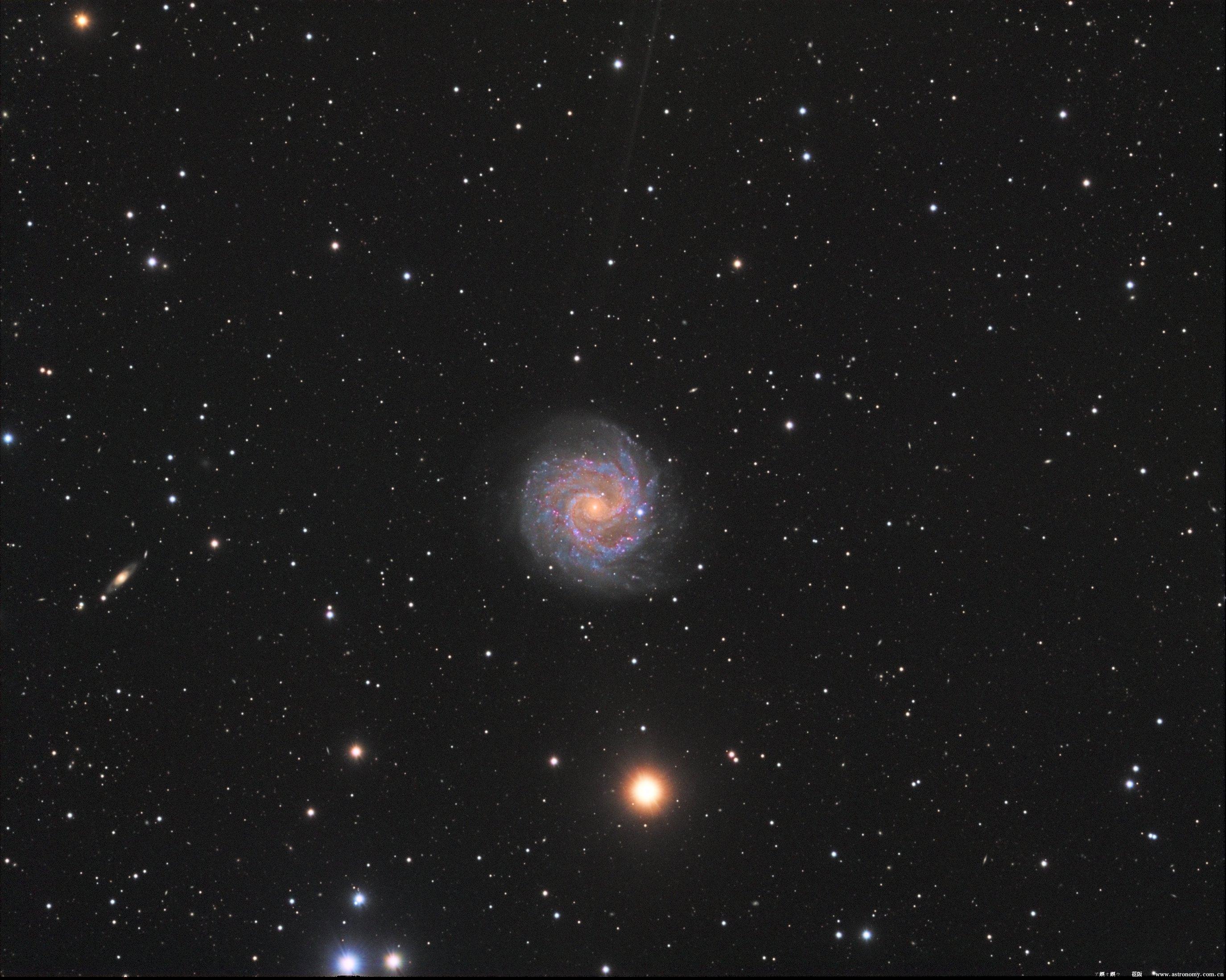 NGC3184_HG.jpg