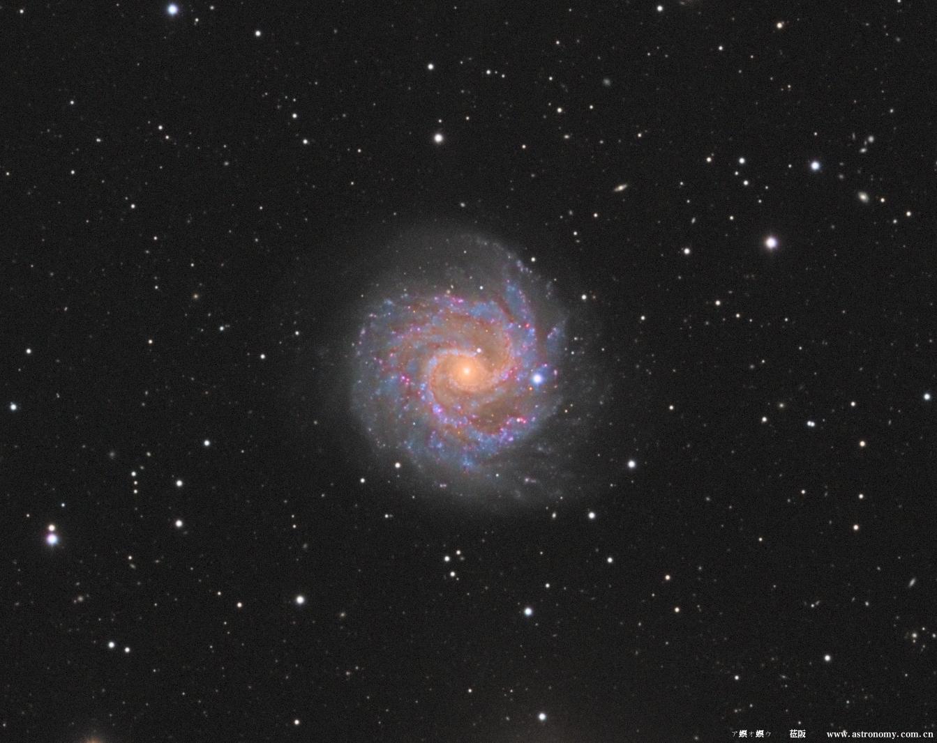 NGC3184_ZOOM.png