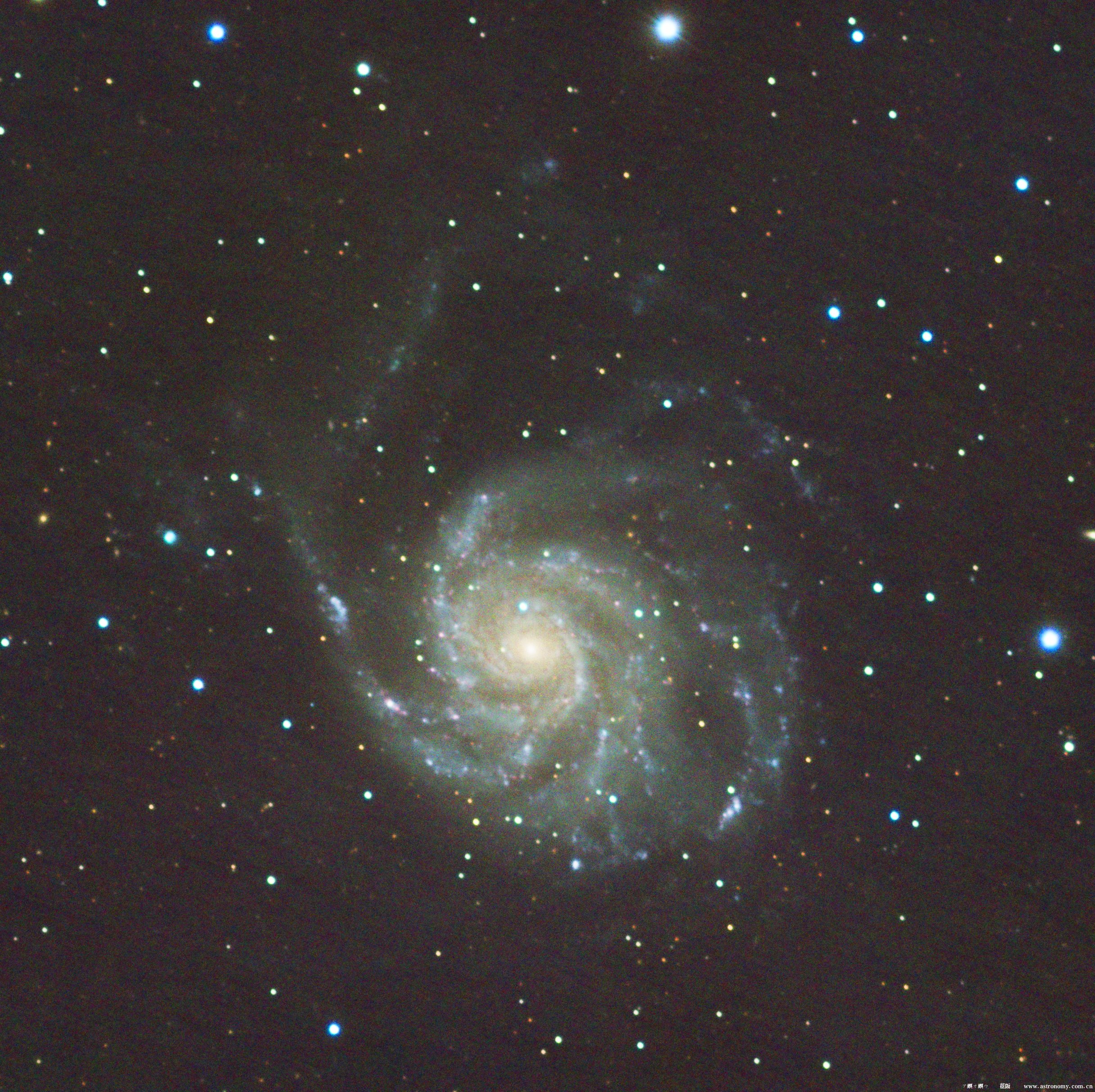 M101_.jpg