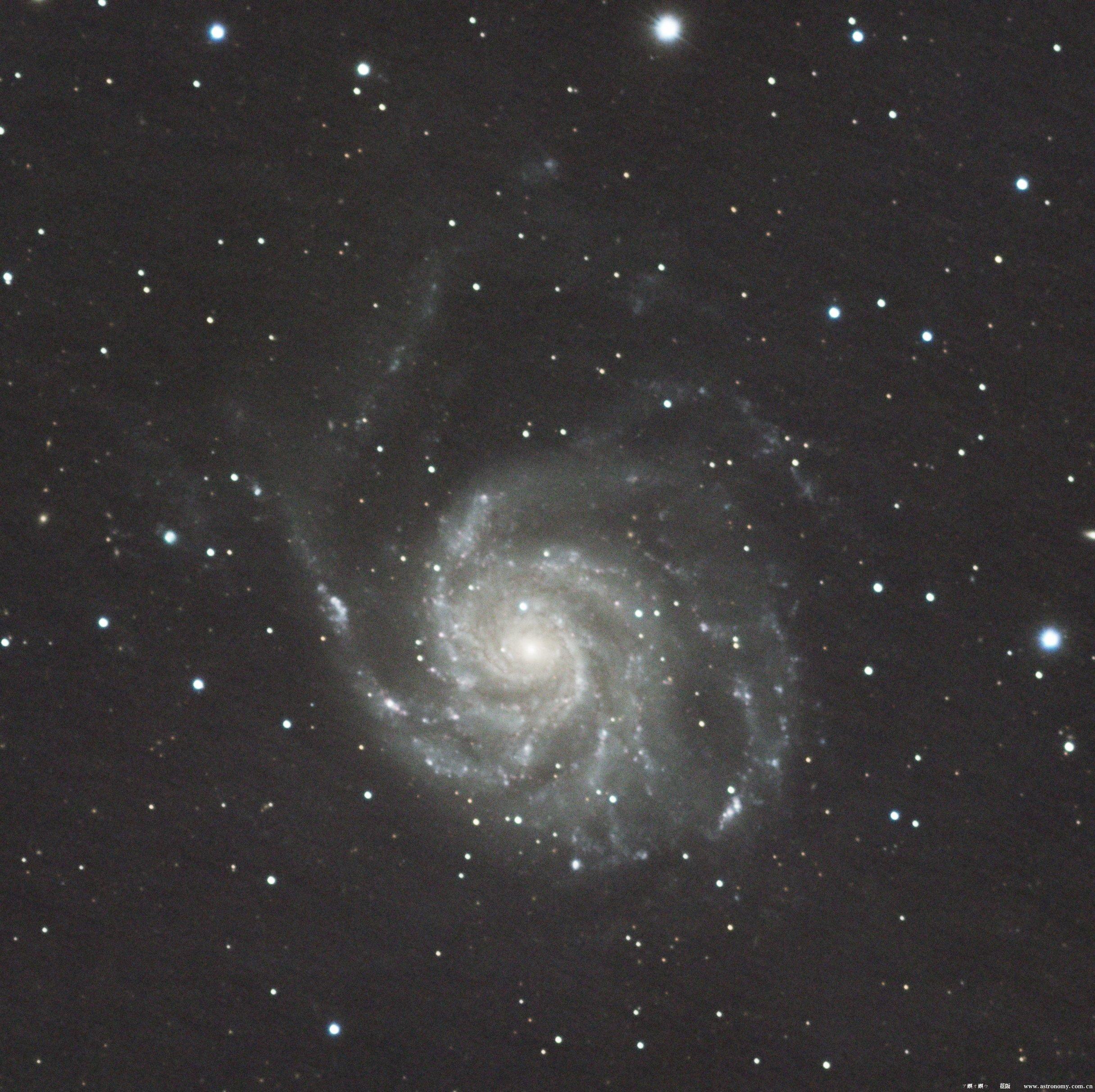 M 101.jpg