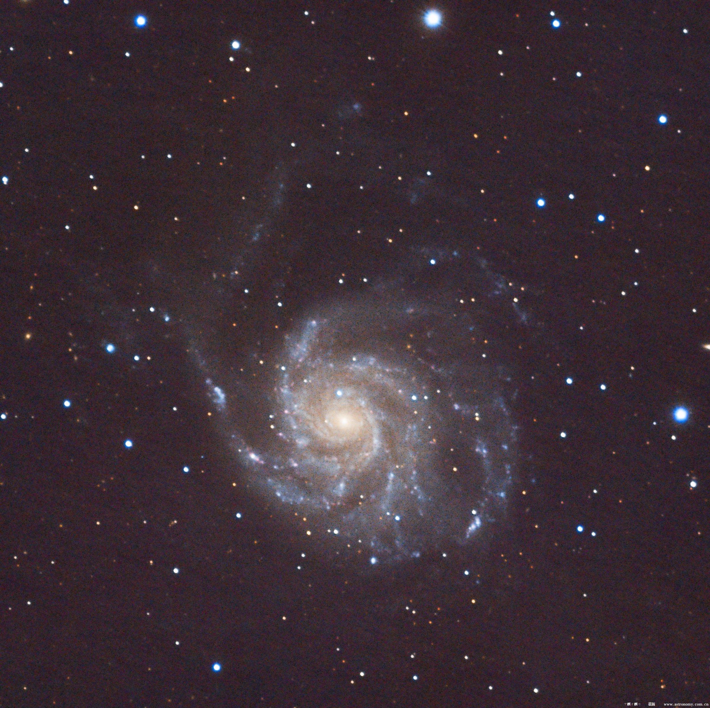M101-1.jpg