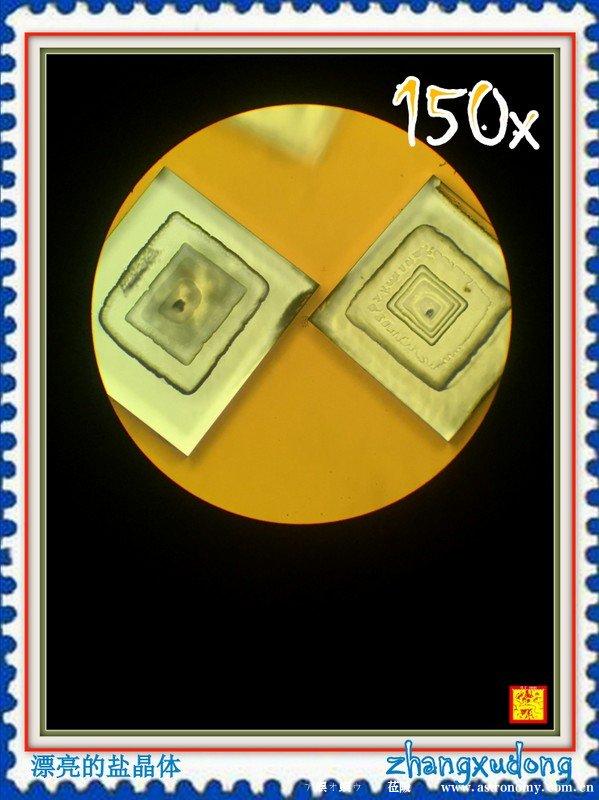 盐晶体显微放大150x摄影--漂亮的盐晶体