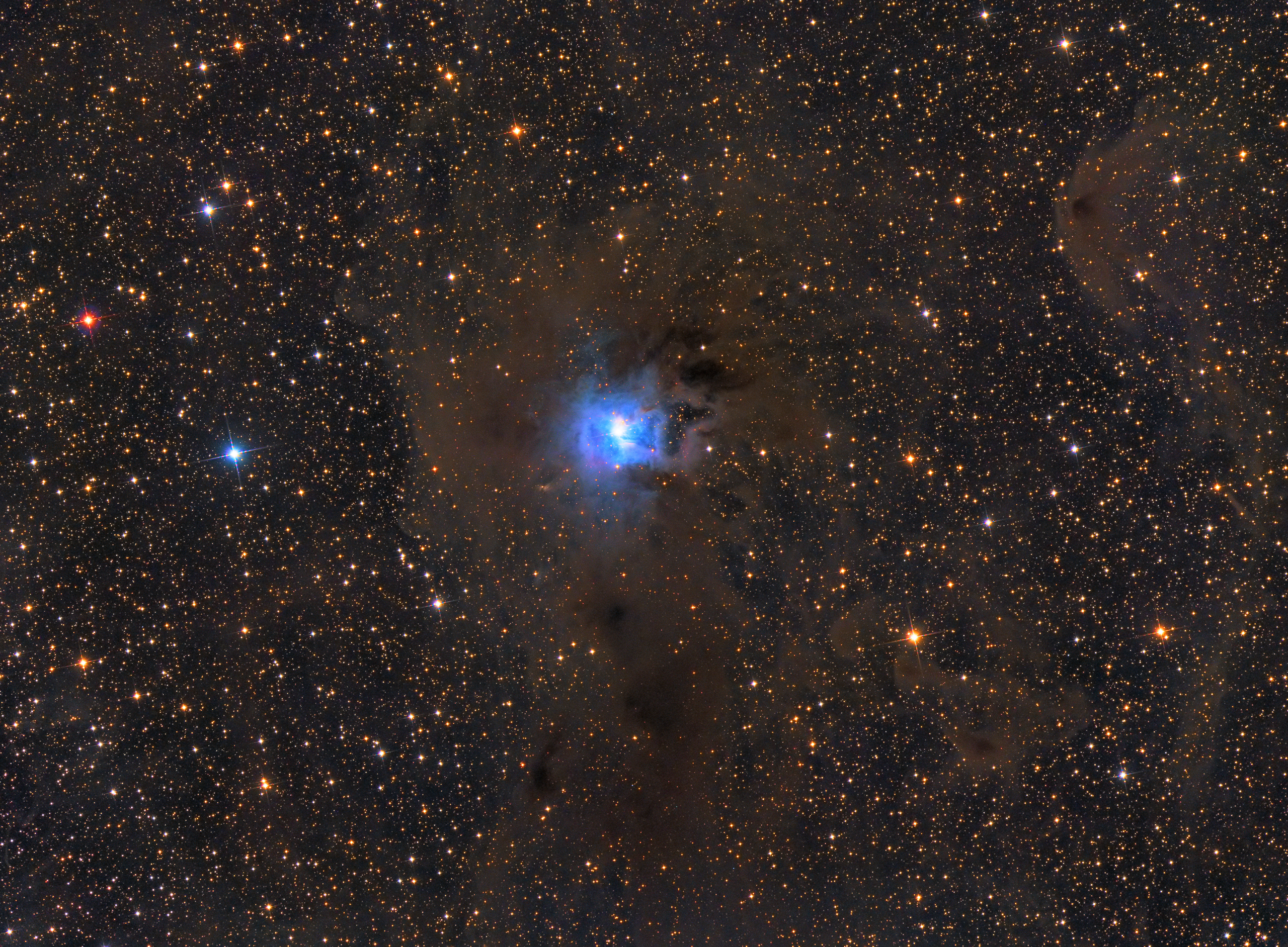 NGC7023鸢尾花星云s.jpg