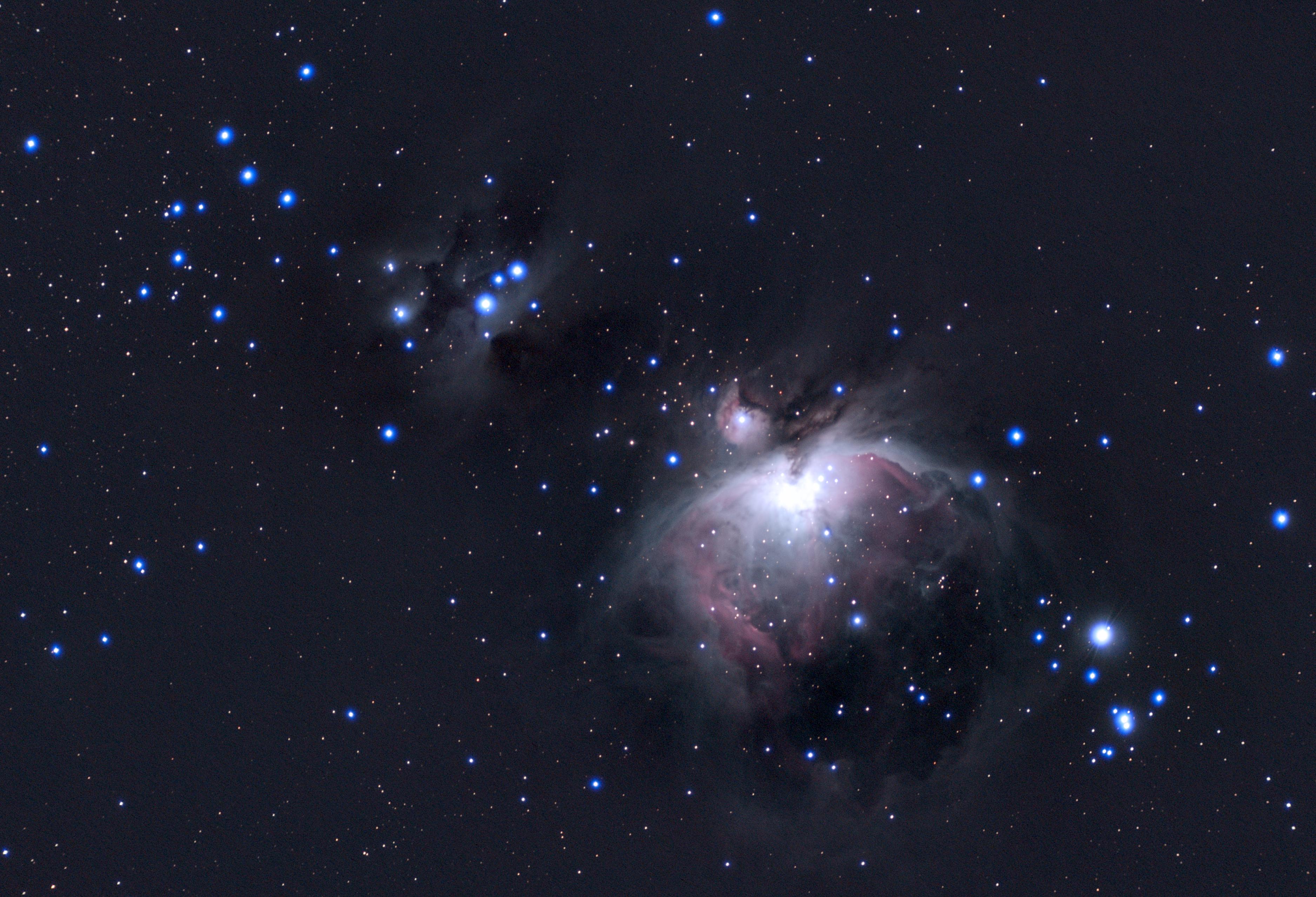 M42-190204、06-pixe.jpg